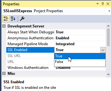 How to Configure IIS Express to Accept SSL Client Certificates